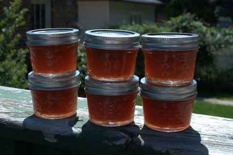 Golden Plum Jam