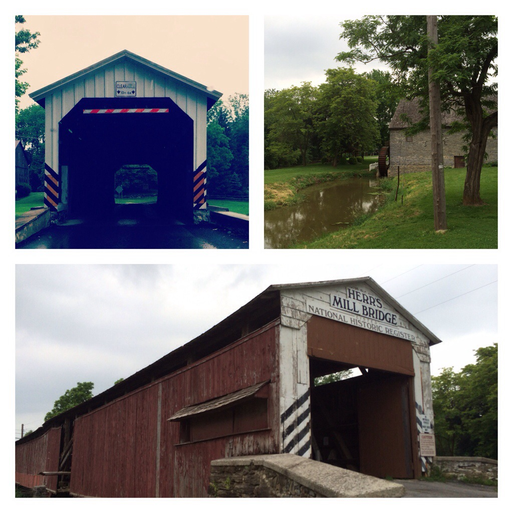 Discovering Covered Bridges