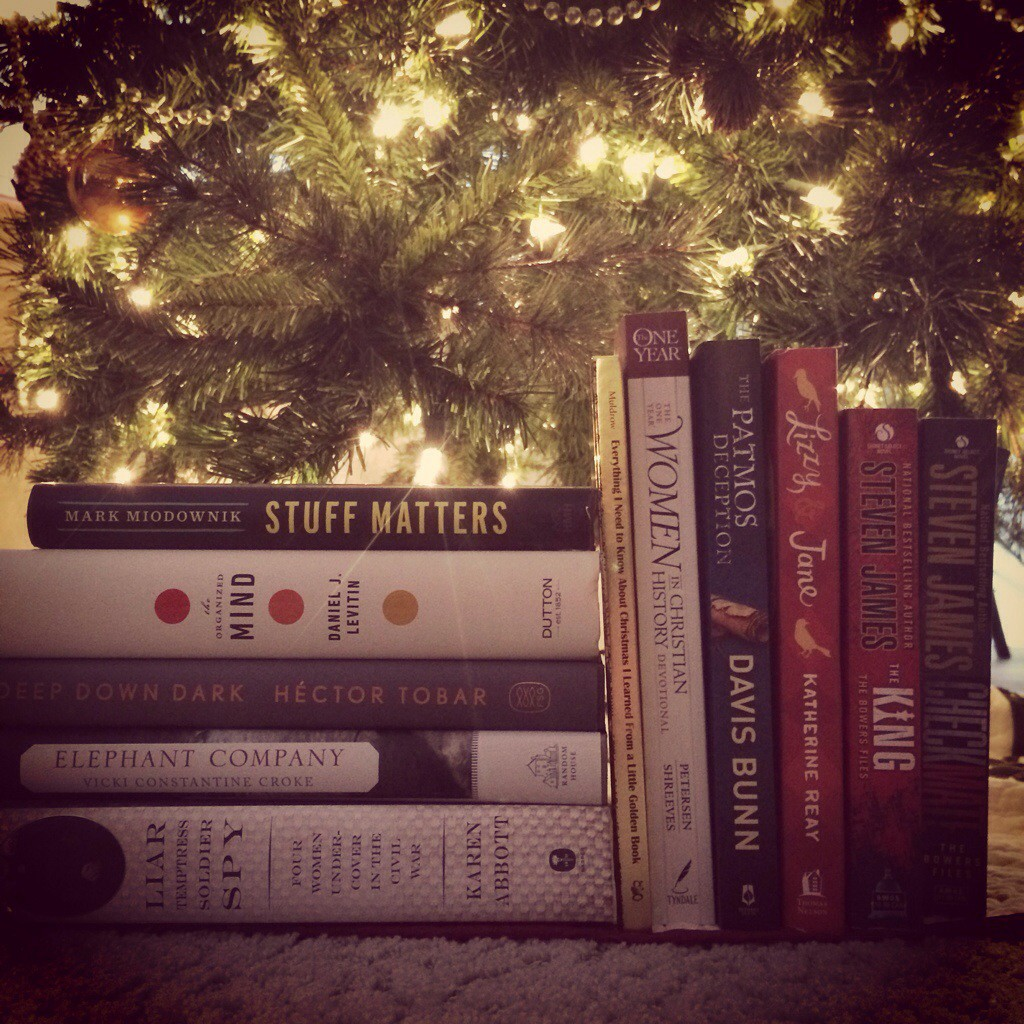 Plenty of books under the Christmas tree!