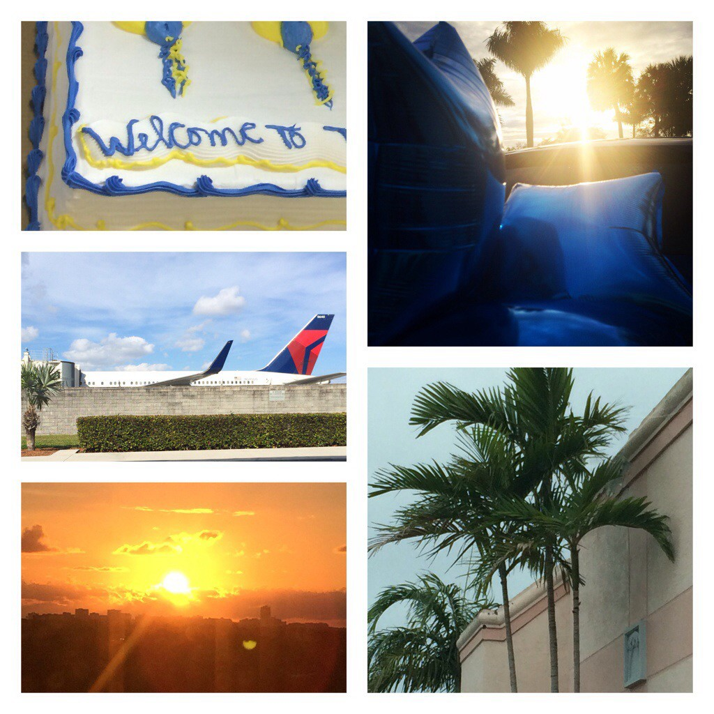 Scenes from a busy & exciting first week on a new project...in Florida...