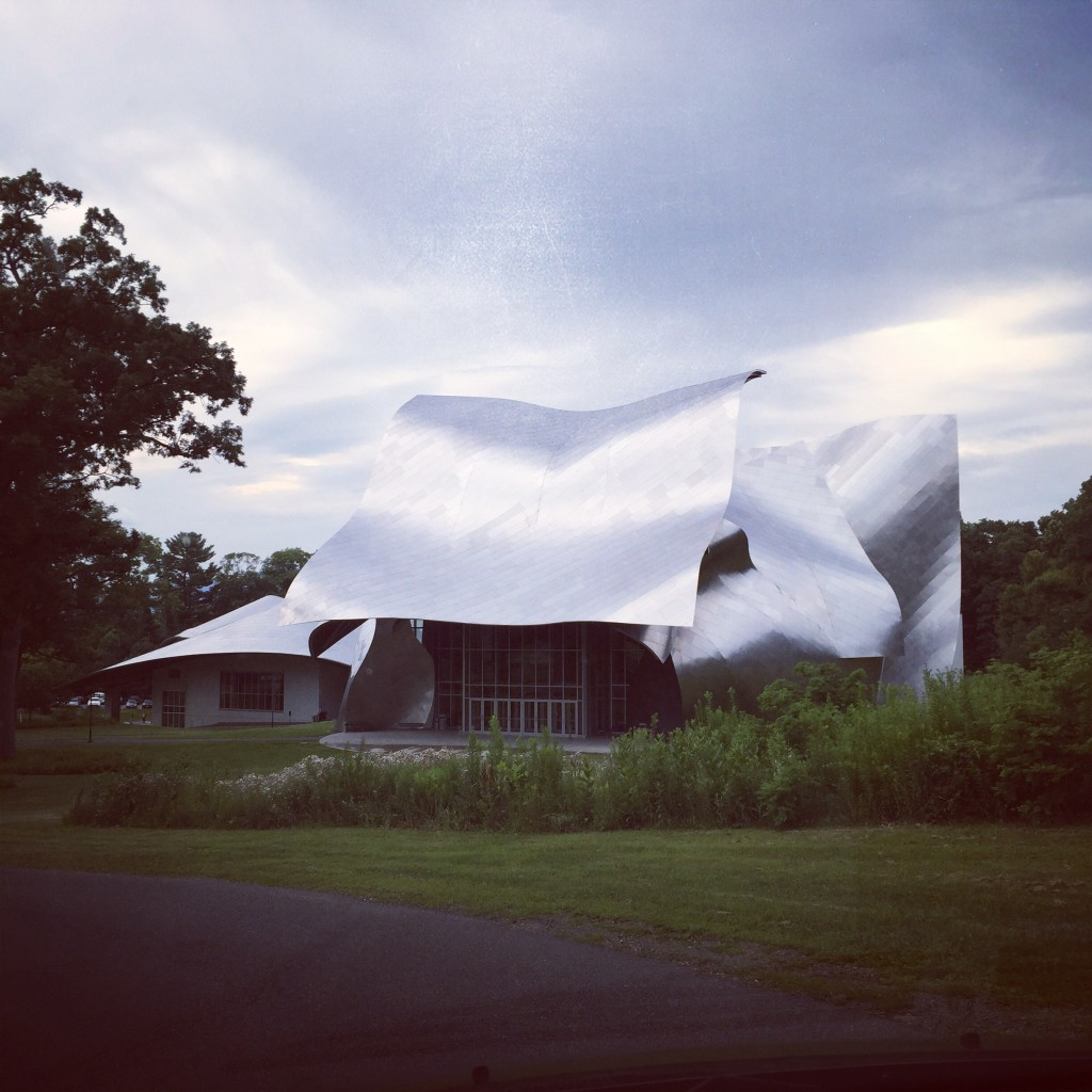 The gorgeous Gehry designed theater at Bard College...