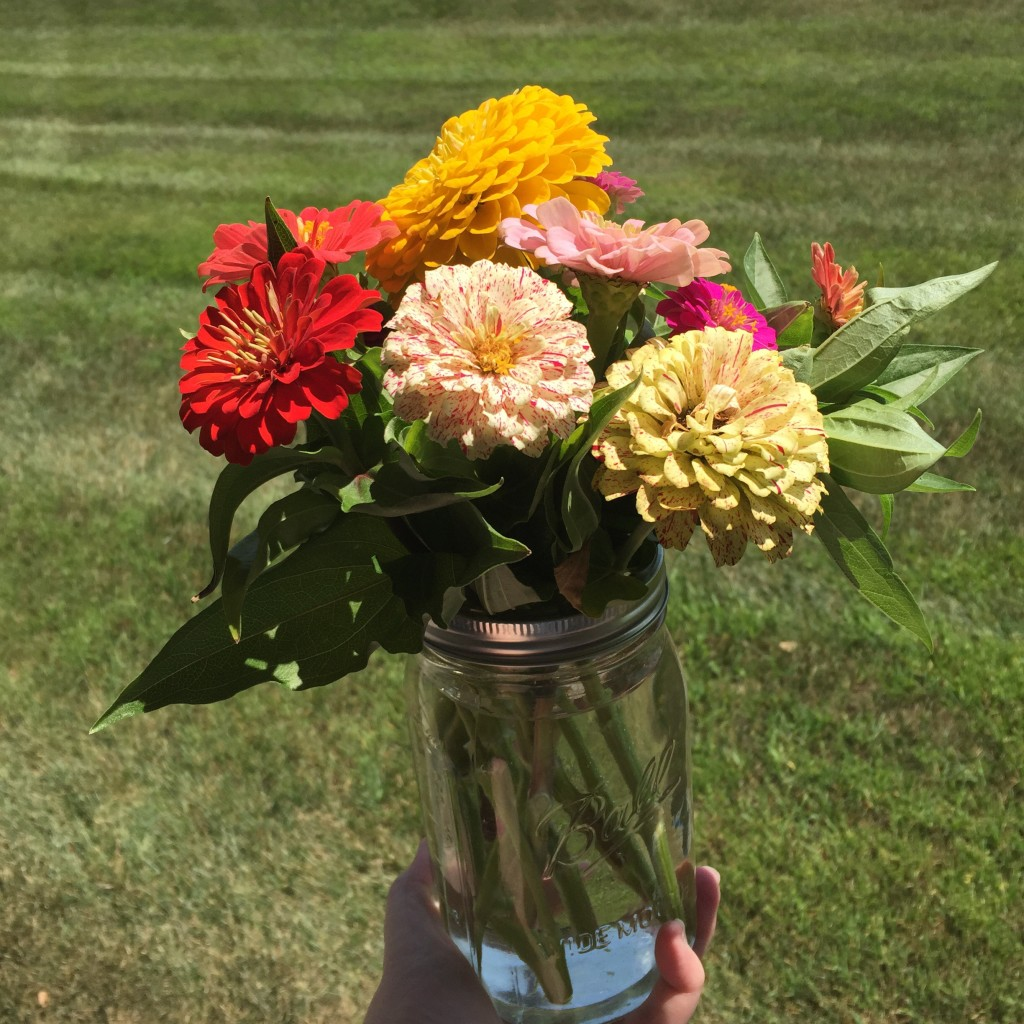 A farm stand bouquet to start the month