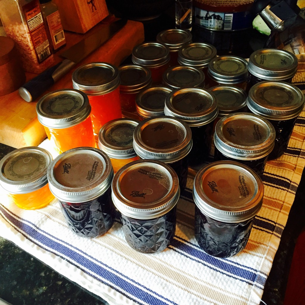 Jam & Pickled Blueberries ready to put up