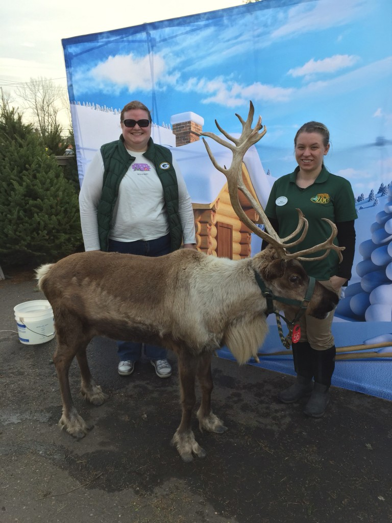Ran into a reindeer while finishing Christmas shopping on a Saturday